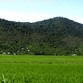 روستای مهویزان استان گیلان