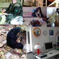 نقش مهم طرح اشتغال خانگی در مهاجرت معکوس روستائیان