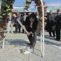 دهیاری گلحصار- کهریزک