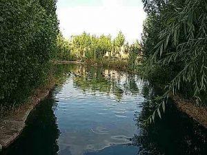روستای مراد آباد
