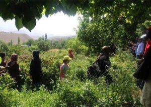 گردشگری روستایی
