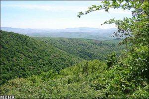 جنگل های استان سمنان