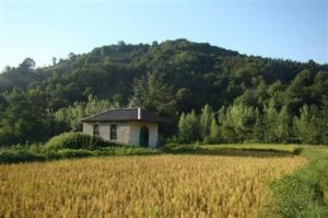 روستای امره