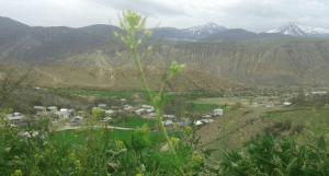 روستای چالو