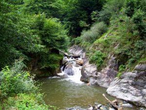 روستای فوشه ی گیلان