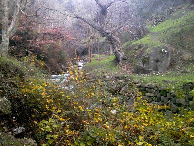 روستای کلشتر رودبار