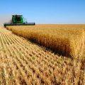 صندوق بیمه اجتماعی کشاورزان دستاورد قانون نظام جامع رفاه تامین اجتماعی است
