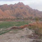روستای گوجگ