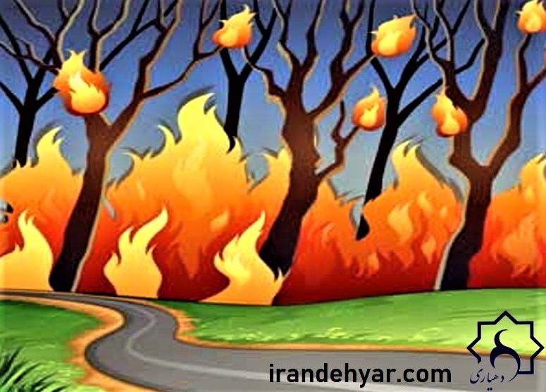 اینفوگرافی پیشگیری از آتش سوزی در طبیعت !!!