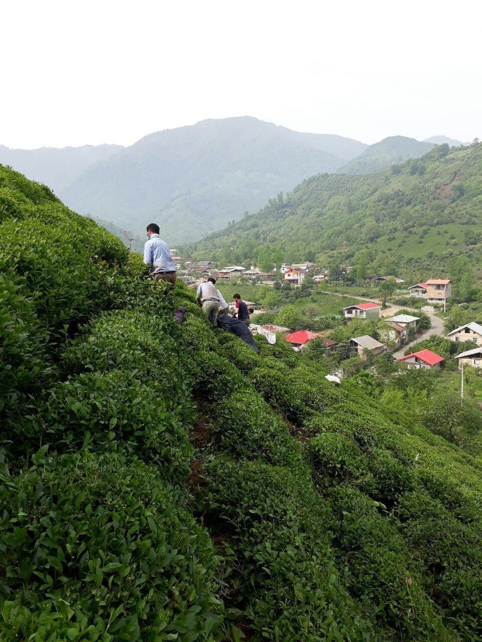 روستای جیرگوابر