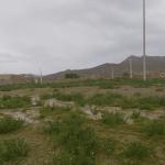 روستای محمدآباد بزی